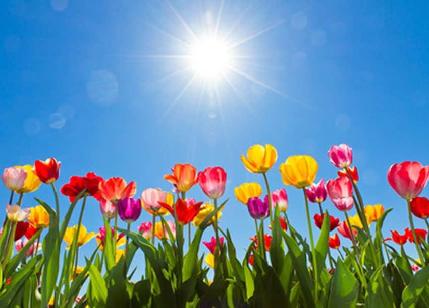 Frühlingsferien